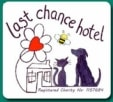 Last chance dog rescue